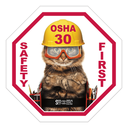 https://www.sswprinting.com/images/img_7054/products_gallery_images/14205_OSHA-30_hi-res.png