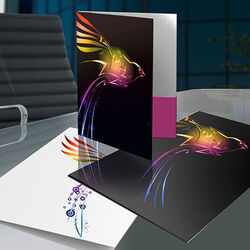 https://www.sswprinting.com/images/img_7054/products_gallery_images/large-presentation-folder-1.jpg