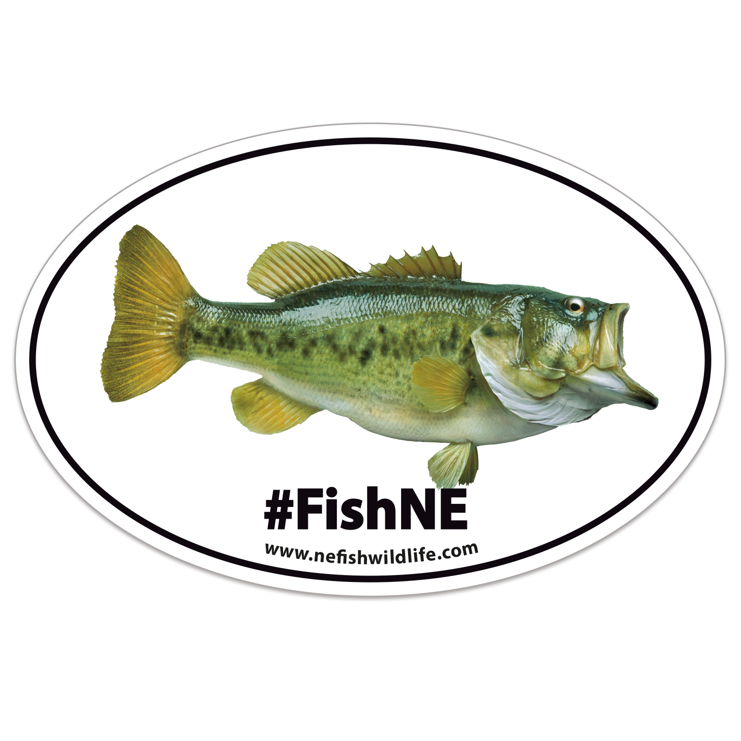 https://www.sswprinting.com/images/products_gallery_images/43824_FishNE_hi-res.png